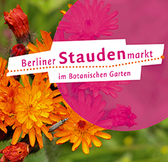 Corporate Design Berliner Staudenmarkt im Botanischen Garten - Booth Design Unit: Grafikdesign, Corporate Design, Printmedien, Webdesign aus Berlin